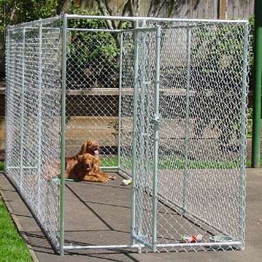 chainlink dog kennels